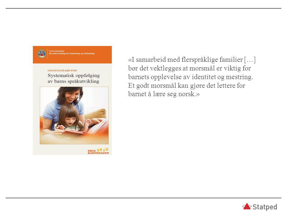 «I samarbeid med flerspråklige familier […] bør det vektlegges at morsmål er viktig for barnets opplevelse av identitet og mestring.
